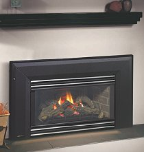 Regency Energy E21 Gas Fireplace Insert Vonderhaar