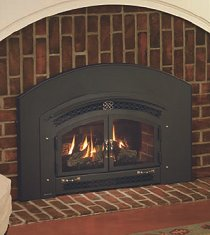 Regency Energy U31 Gas Fireplace Insert