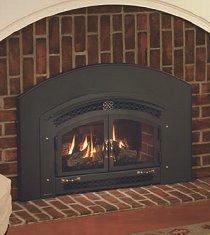 Regency Energy U31 Gas Fireplace Insert Vonderhaar
